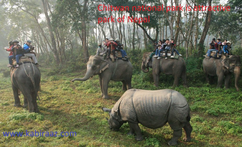 Chitwan national park is attractive park of Nepal