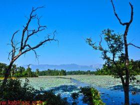 Ghadghodiis beautiful place you should visit it